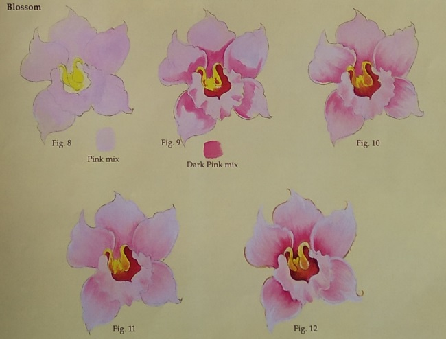 Drawing the Orchid's Blossom