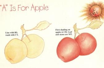 Back To Basics, Fruit Series